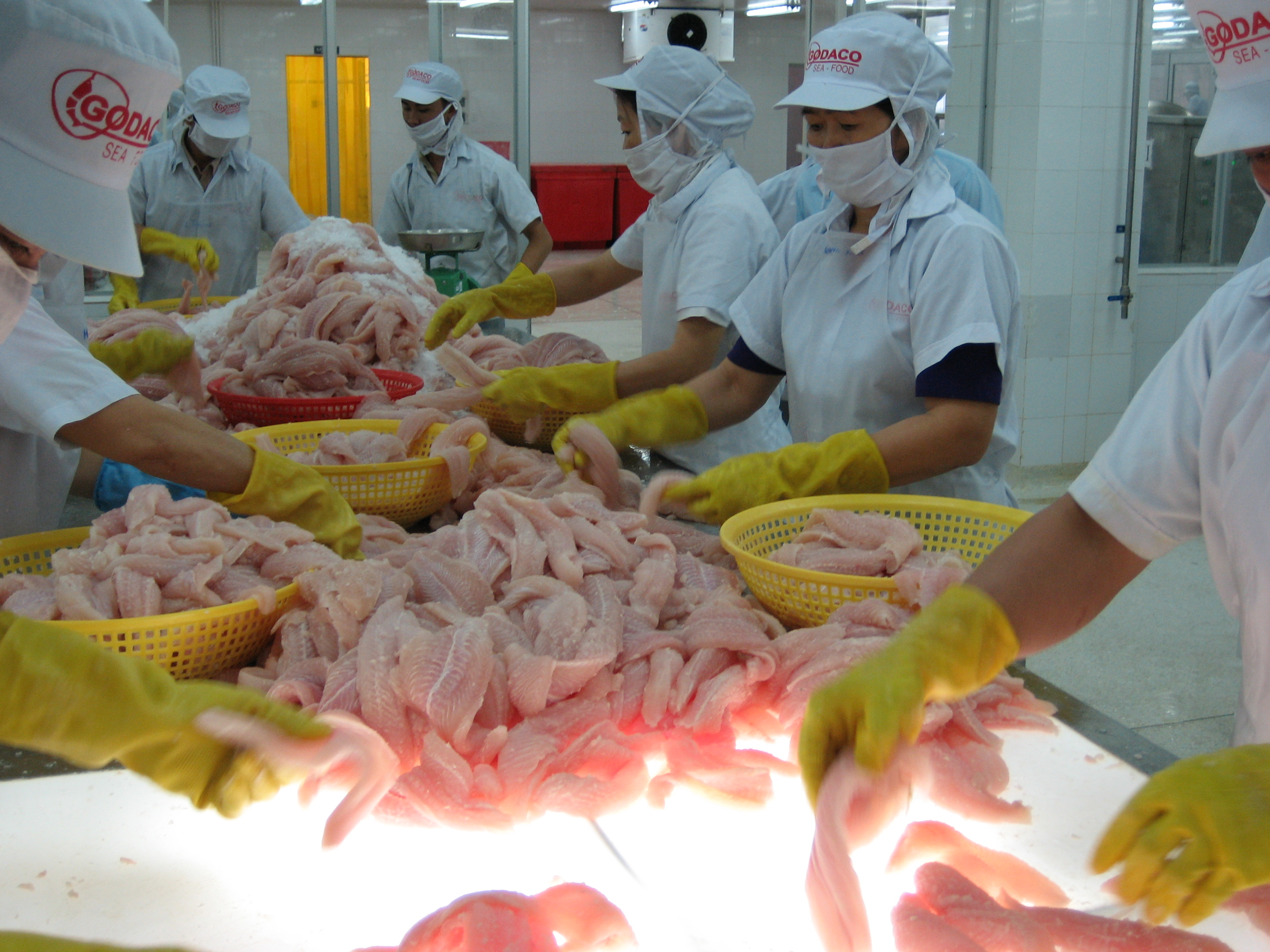 Vietnam will have to compete more with India in seafood exports