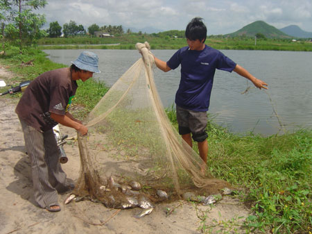 Strengthening resilience to the effects of climate change for vulnerable coastal communities in Vietnam