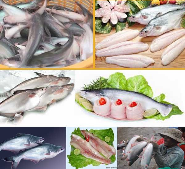 Vietnamese seafood contributes 3.43% of the national GDP