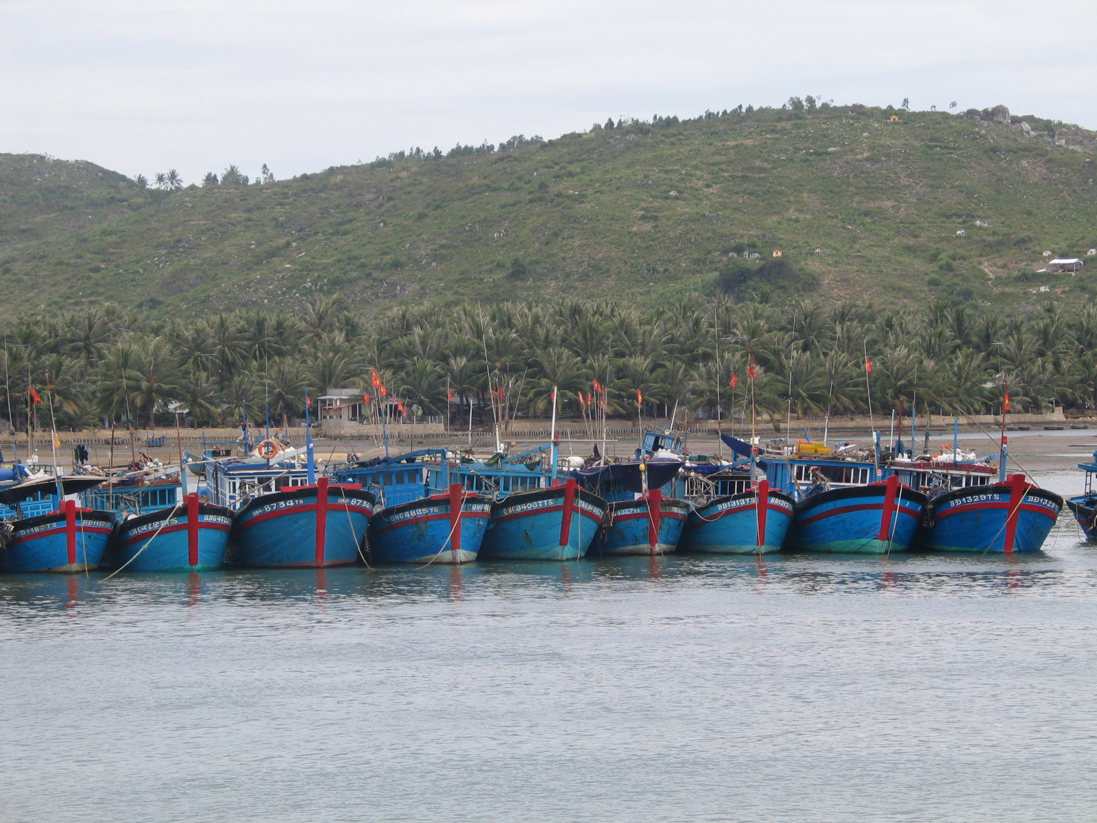 Fishery development potential of Ben Tre province