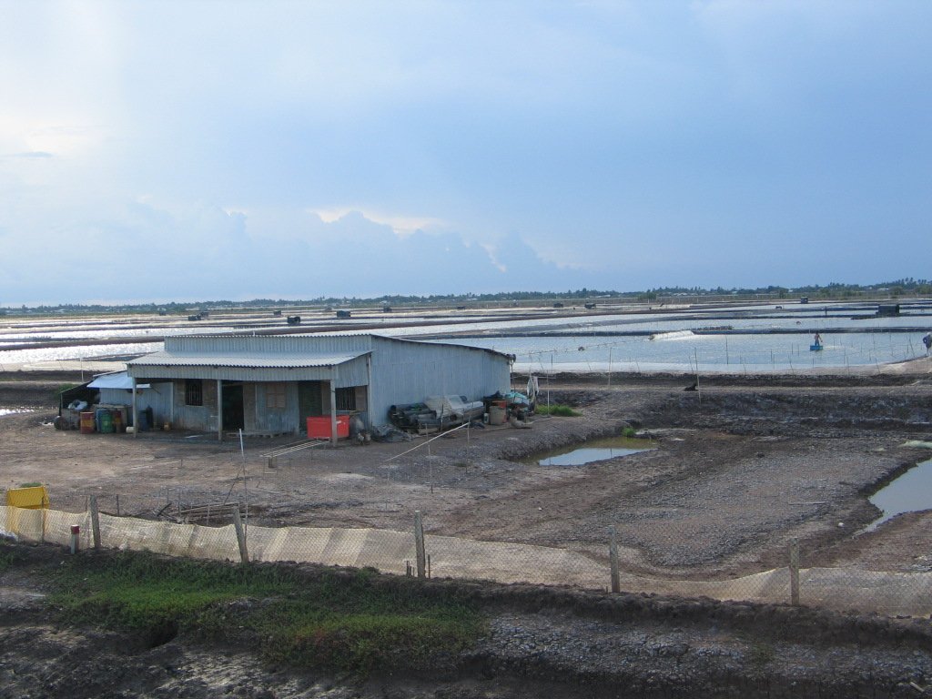 Ninh Binh: Developing association model – a new direction in aquaculture in Nho Quan