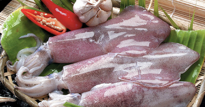 Vietnamese squid and octopus are favored in South Korea