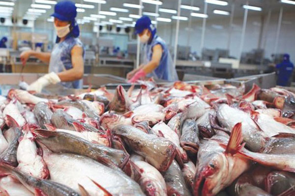 Food Safety Control System for Vietnamese Catfish is Equivalent to The United State