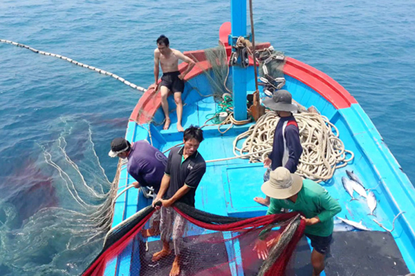 Captains of fishing vessels must submit fishing logbooks to managing fishing