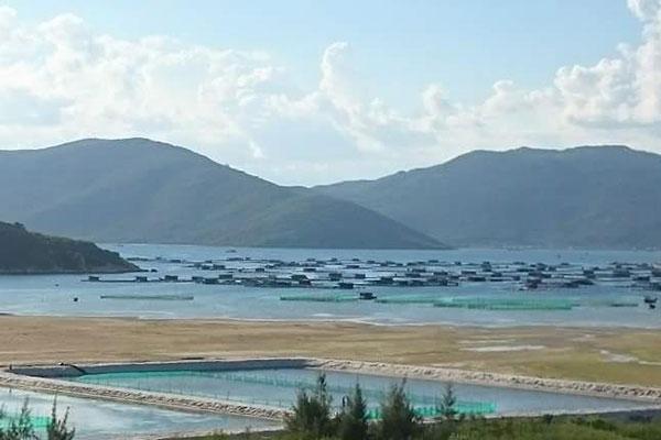 Đưa công nghiệp nuôi biển trở thành bộ phận chính của kinh tế biển nước ta