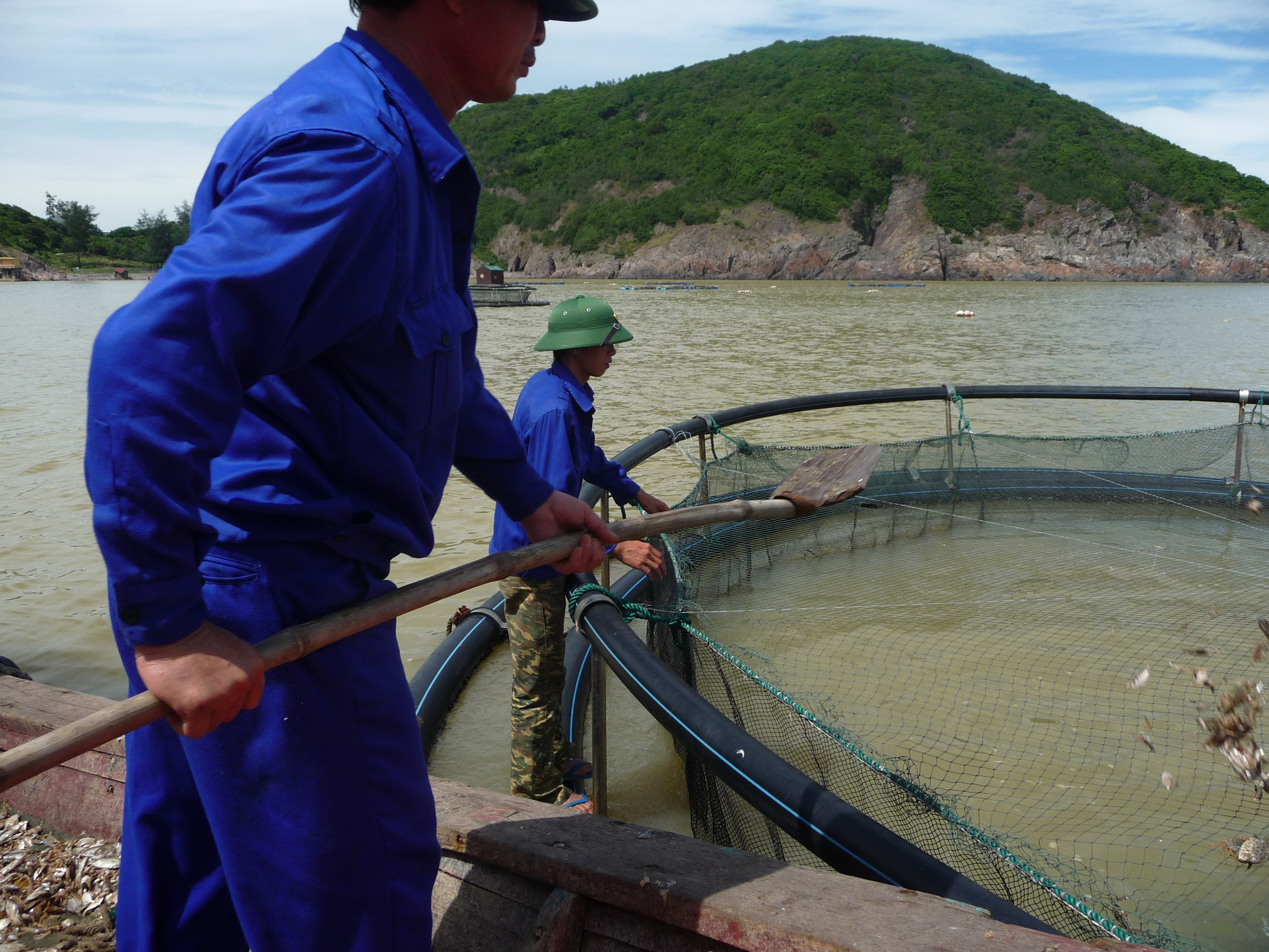 Vietnam ranked in top countries for aquaculture production