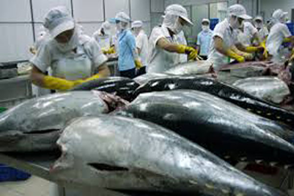 Вьетнам наращивает поставки тунца на российский рынок